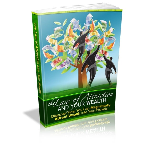 the correlation between the law of attraction and your wealth